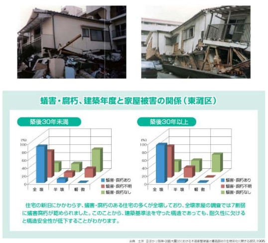 阪神・淡路大震災とシロアリ被害